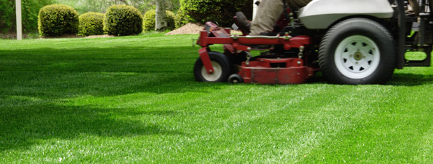 Green Grass Lawn Care Nebraska : Reasonable reliable lawn care residential and commercial
